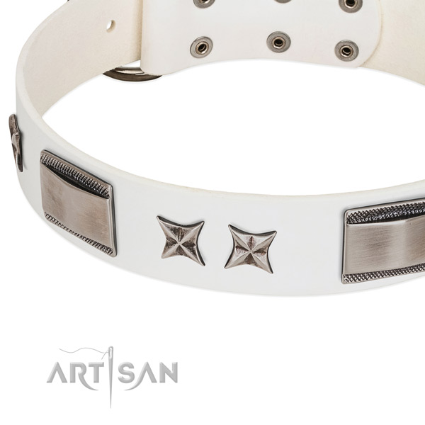 Soft to touch leather dog collar with durable fittings