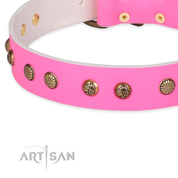 Leather collar with corrosion proof hardware for your lovely dog