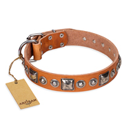 """Era of Future"" FDT Artisan Handcrafted Tan Leather Labrador Collar with Decorations"