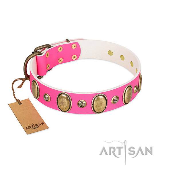 Daily use quality full grain natural leather dog collar with adornments