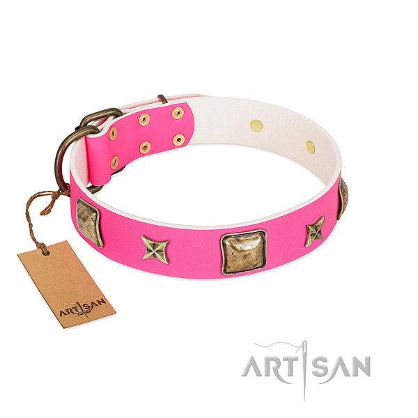 Full grain leather dog collar of reliable material with incredible studs