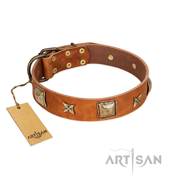 Exquisite genuine leather collar for your four-legged friend