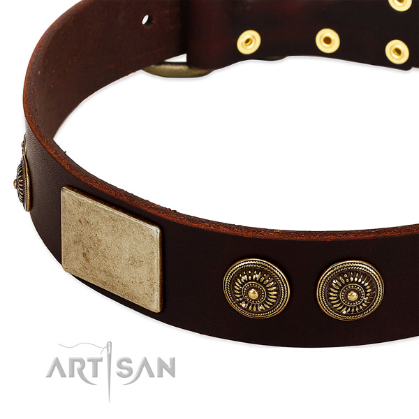 Rust resistant decorations on genuine leather dog collar for your canine