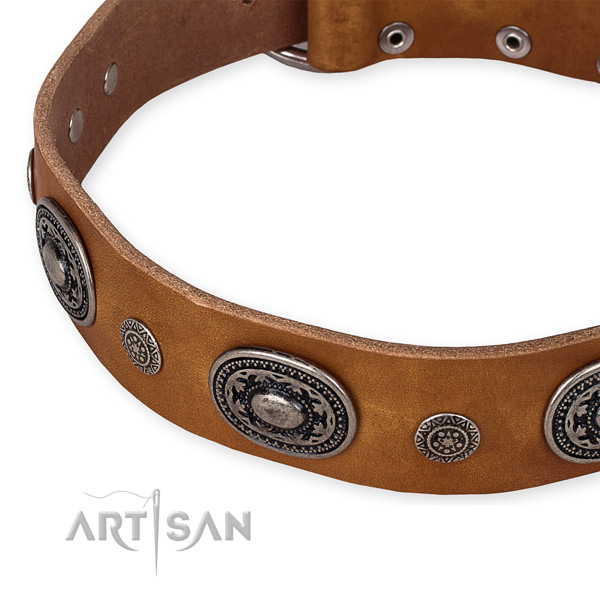 Reliable natural genuine leather dog collar crafted for your impressive canine