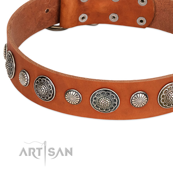 Full grain natural leather collar with corrosion proof hardware for your handsome pet