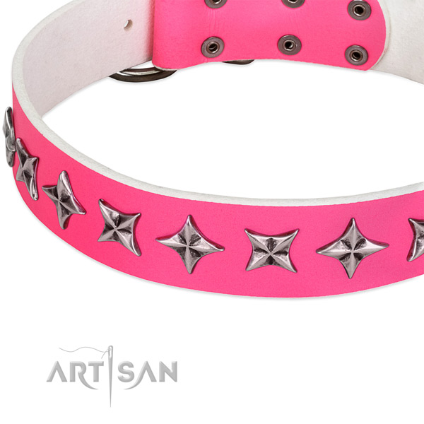 Everyday use studded dog collar of fine quality natural leather