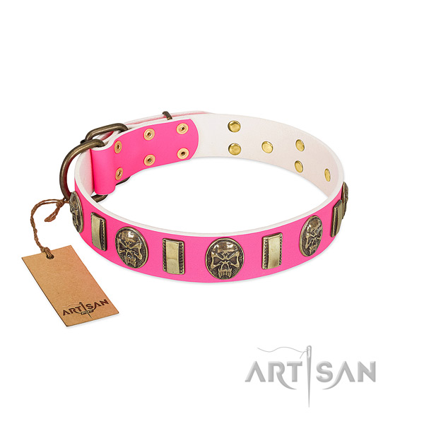 Reliable adornments on genuine leather dog collar for your dog