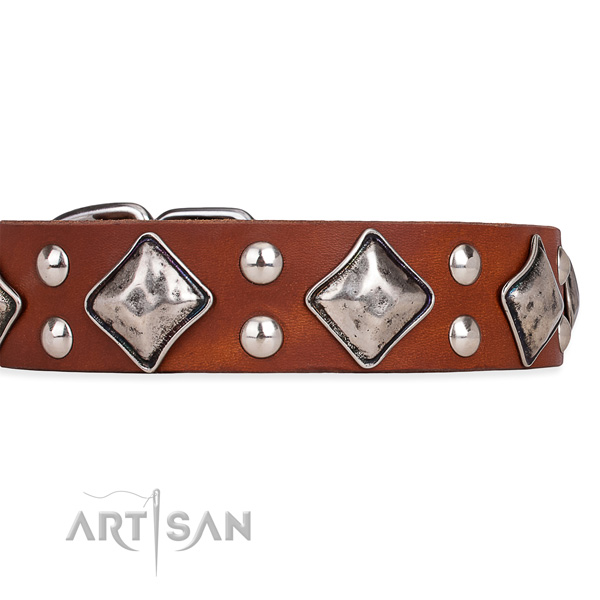 Full grain genuine leather dog collar with incredible durable adornments
