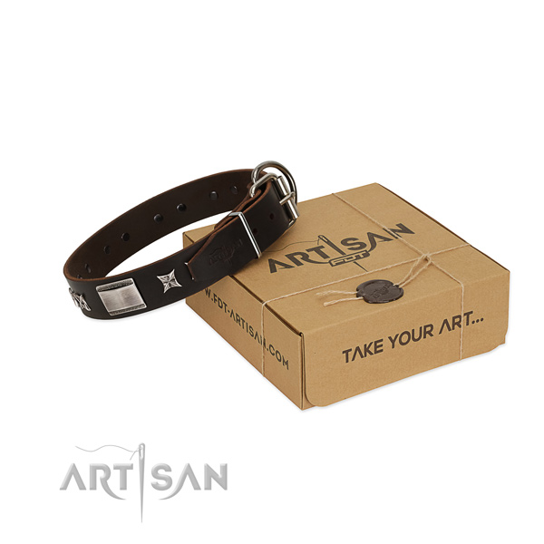 Awesome collar of full grain natural leather for your beautiful four-legged friend