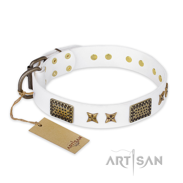 Easy wearing full grain natural leather dog collar with reliable fittings