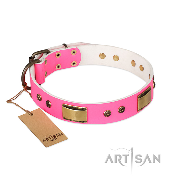 Perfect fit full grain leather collar for your four-legged friend