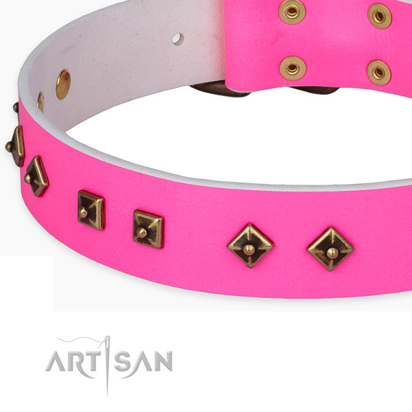 Awesome leather collar for your lovely dog
