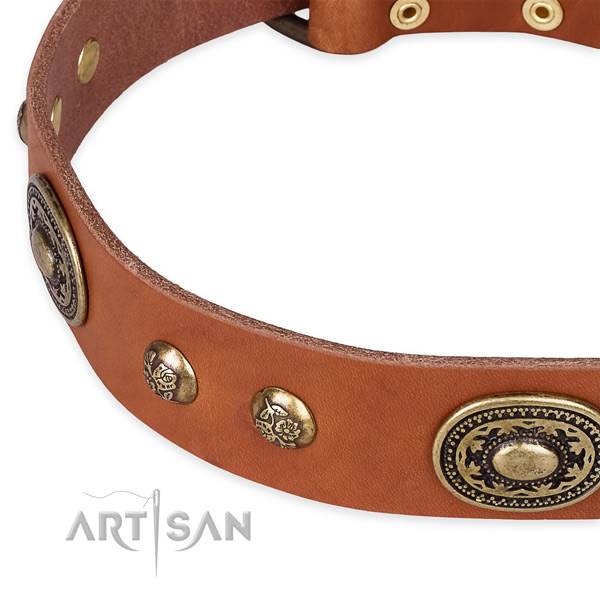 Inimitable genuine leather collar for your attractive dog