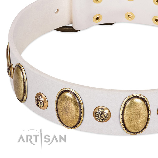Full grain leather dog collar with fashionable studs