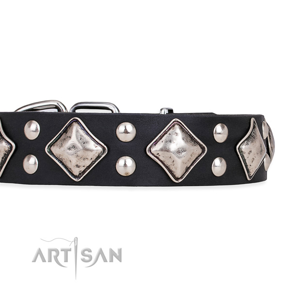 Natural leather dog collar with designer corrosion resistant adornments