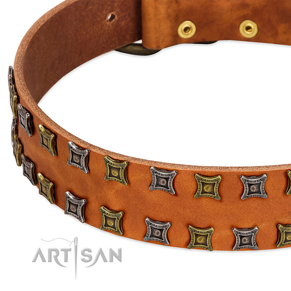 Best quality full grain natural leather dog collar for your attractive four-legged friend
