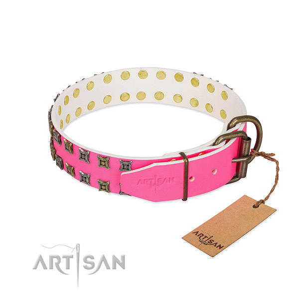 Full grain genuine leather collar with awesome embellishments for your four-legged friend