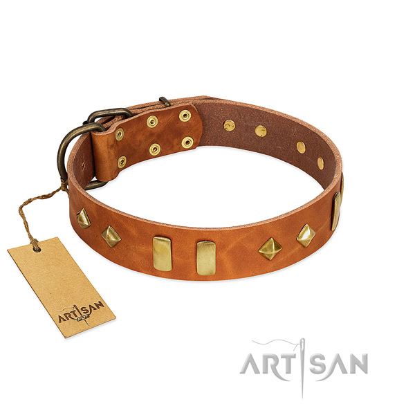 Daily walking top rate genuine leather dog collar with embellishments