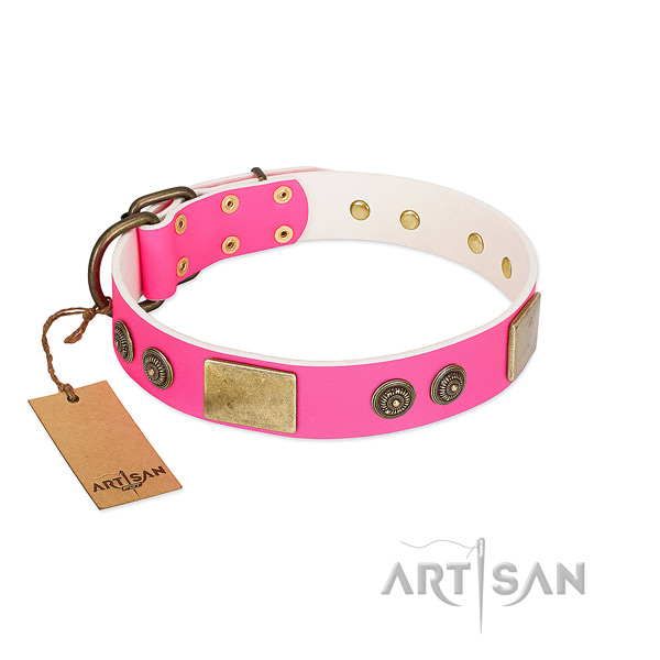 Best quality full grain leather dog collar for daily walking