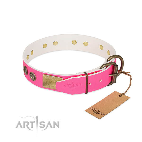 Durable hardware on natural genuine leather collar for walking your doggie