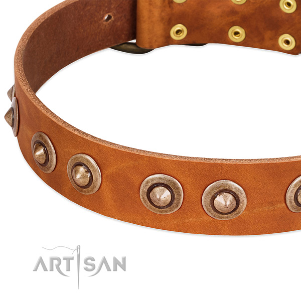 Rust resistant D-ring on full grain leather dog collar for your pet