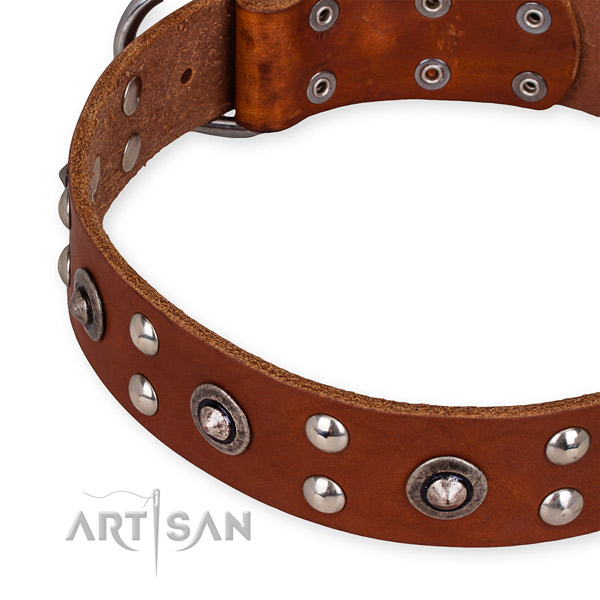 Full grain natural leather collar with rust resistant traditional buckle for your impressive dog