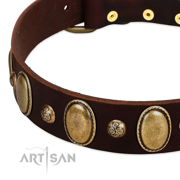 Full grain genuine leather dog collar with impressive studs