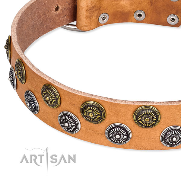 Basic training decorated dog collar of high quality natural leather