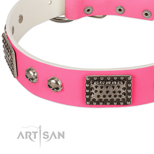 Rust resistant embellishments on full grain genuine leather dog collar for your pet