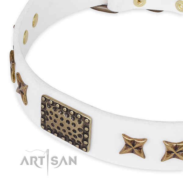 Full grain natural leather collar with corrosion proof fittings for your impressive canine