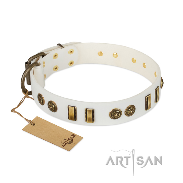 Durable studs on leather dog collar for your canine