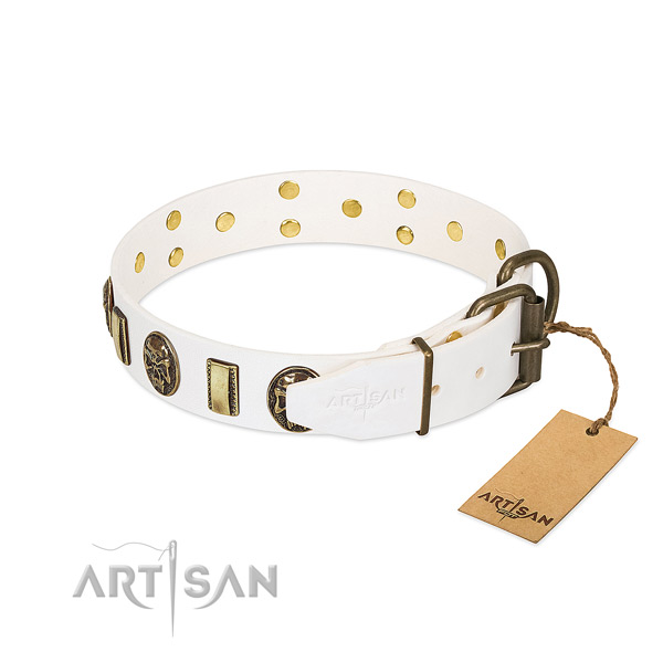 Rust resistant D-ring on genuine leather collar for daily walking your doggie