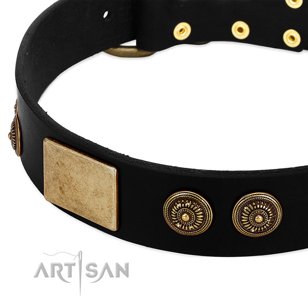 Strong studs on genuine leather dog collar for your pet