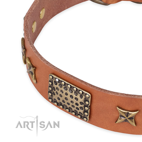 Full grain natural leather collar with corrosion proof D-ring for your stylish four-legged friend