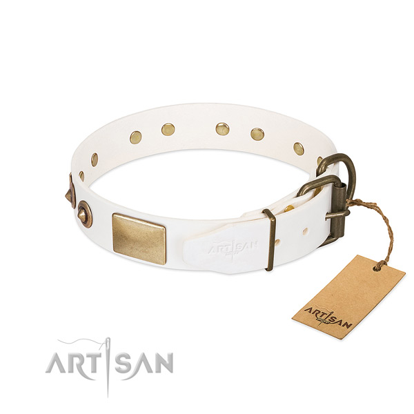 Corrosion proof fittings on full grain genuine leather dog collar for your doggie