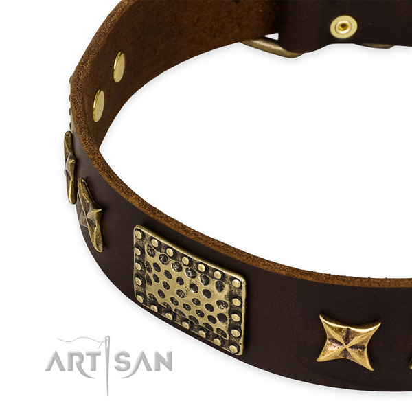 Genuine leather collar with rust resistant traditional buckle for your beautiful pet