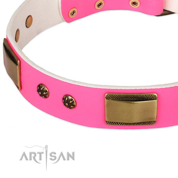 Strong studs on leather dog collar for your canine