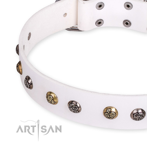 Full grain natural leather dog collar with inimitable strong decorations