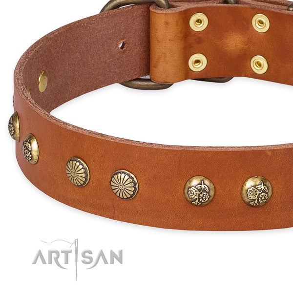 Genuine leather collar with reliable D-ring for your handsome dog