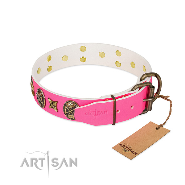 Strong buckle on full grain leather collar for walking your pet