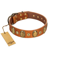 """Crystal Sand"" FDT Artisan Tan Leather Labrador Collar with Vintage Looking Oval and Round Studs"
