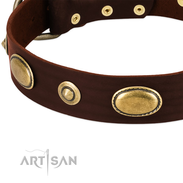 Rust-proof buckle on full grain leather dog collar for your dog