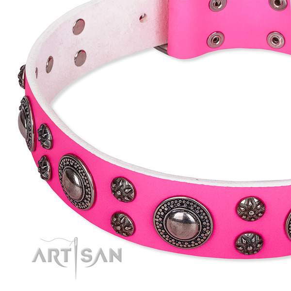 Walking adorned dog collar of strong leather