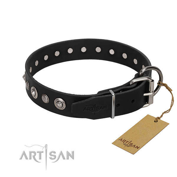 Strong genuine leather dog collar with extraordinary embellishments