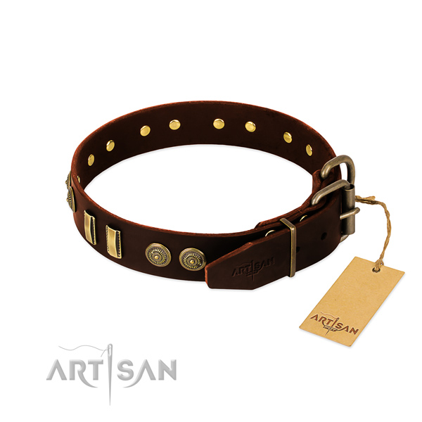 Corrosion proof traditional buckle on natural leather dog collar for your dog