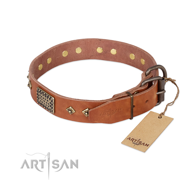 Leather dog collar with corrosion proof hardware and adornments