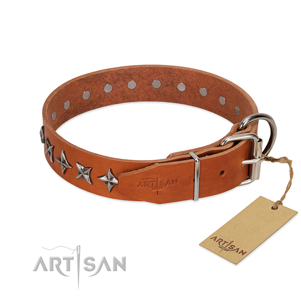 Daily use adorned dog collar of durable full grain natural leather