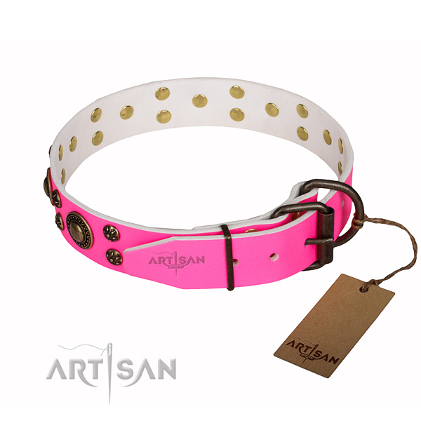 Handy use embellished dog collar of best quality natural leather