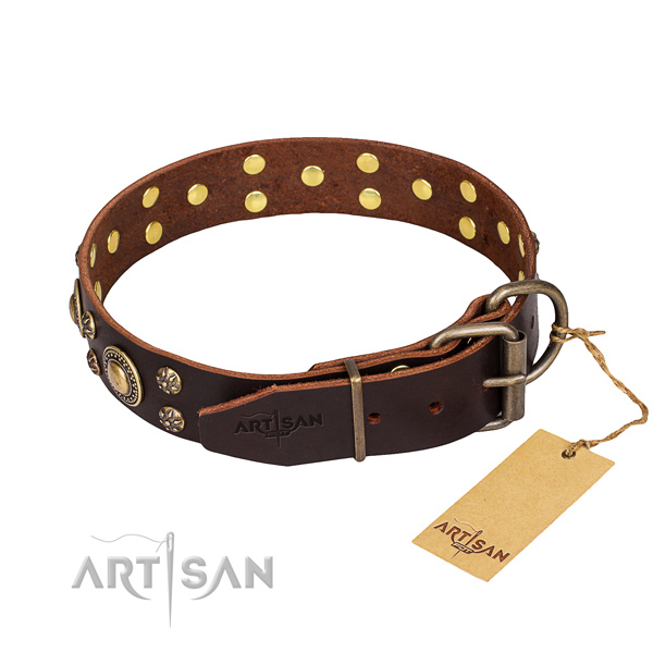 Everyday use decorated dog collar of finest quality full grain leather
