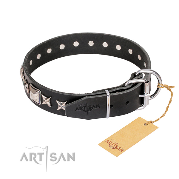 Strong studded dog collar of natural leather